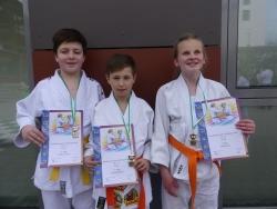 Judo: Die U 15 erfolgreich bei der Niederbayerischen Meisterschaft